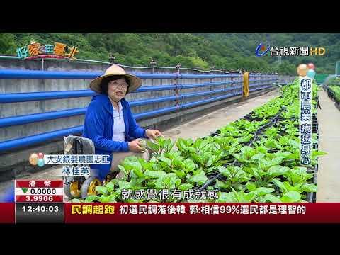 【台視新聞 TTV NEWS】台北綠色田園城市打造銀髮族開心農園