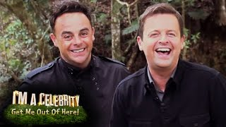 Ant & Dec's Favourite Moments Of 2015 | I'm A Celebrity...Get Me Out Of Here!