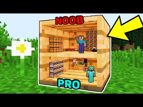 Minecraft NOOB vs PRO : HOUSE IN ONE BLOCK CHALLENGE IN MINECRAFT! ANIMATION