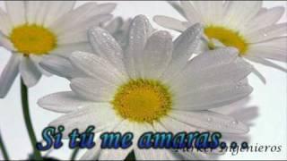 Cristian Castro-si tu me amaras