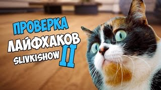 ПРОВЕРКА лайфхаков с канала Slivkishow 2 | Макс Брандт