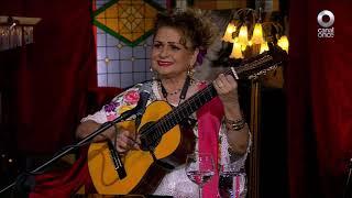 Noche, boleros y son - Bohemia Yucateca