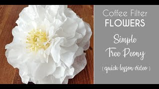 Coffee Filter Flowers - Simple Peony (quick Video Lesson)