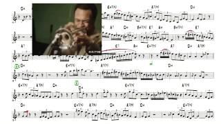 Freddie Hubbard Jazz Blues Solo Transcription (Birdlike) - Most