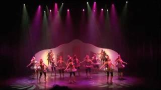 Opening revue 2011