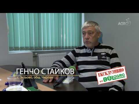 Слънчогледов хибрид ДЖЕНОВА - ексклузивно от Булагро!