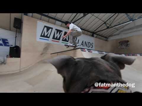 The cameraman following this skateboarder is a dog. Cameradog?