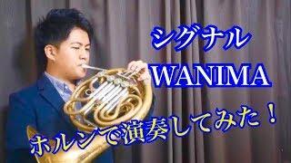 シグナル/WANIMAホルンで演奏してみた!
