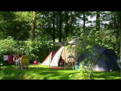 Camping De Waps, Gaasterland (Friesland) in vogelvlucht: kamperen in sfeervol en bosrijk Gaasterland