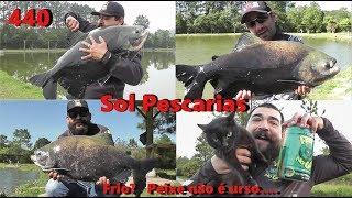 Frio em SP e uma ótima pescaria no SOL - Fishingtur na Tv 440