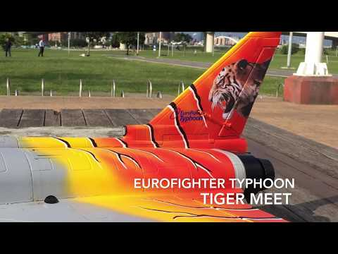 freewing-eurofighter-typhoon-tiger-meet_jc