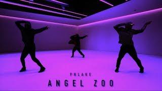 Tobias Ellehammer Choreography / Angel Zoo - Phlake