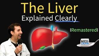 Liver Explained! Function, Pathology, Diseases, & Cirrhosis