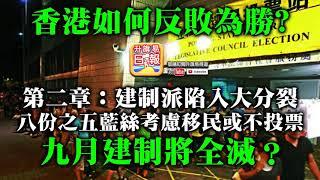 7.7 【香港如何反敗為勝?】第二章:建制派陷入大分裂,八份之五藍絲考慮移民或不投票,九月建制將全滅?