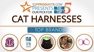 Best Cat Harness Reviews  – How to Choose the Best Cat Harness
