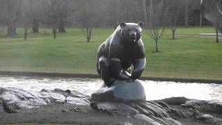 preview picture of video 'Bear Fountain PepsiCo Park Purchase NYP1300067.MOV'