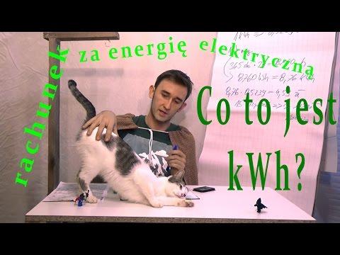 Przeciętny rachunek za energię elektryczną Moskwa