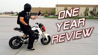 One Year With a Honda Grom | Owner