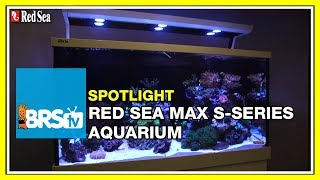 Spotlight on the Red Sea Max S Aquarium Systems - BRStv