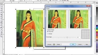 Bitmap Menu Part 2 In Corel Draw/ How To Change Image Effect