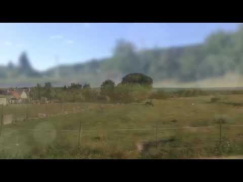 Ingyenes webcam