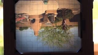55. View Camera Movements