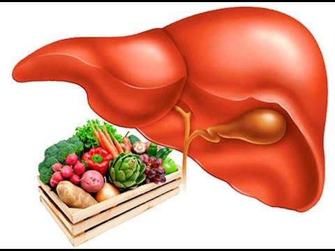 Цикорий при жировом гепатозе печени
