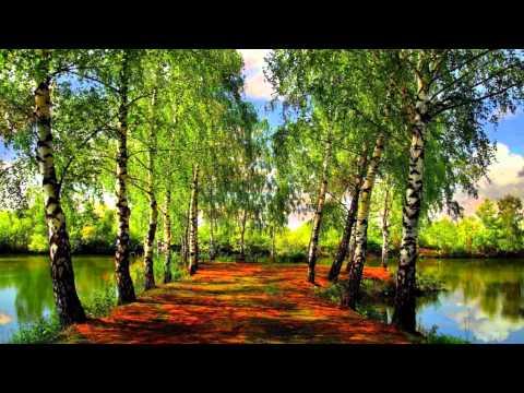 Самая красивая природа .10-й фильм Натальи Егоровой.