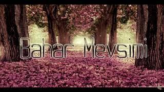 Serkan Taşkın - Bahar Mevsimi (Offical Audio)
