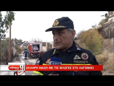 Σκληρή μάχη με τις φλόγες στο Λαγονήσι | 13/09/2019 | ΕΡΤ
