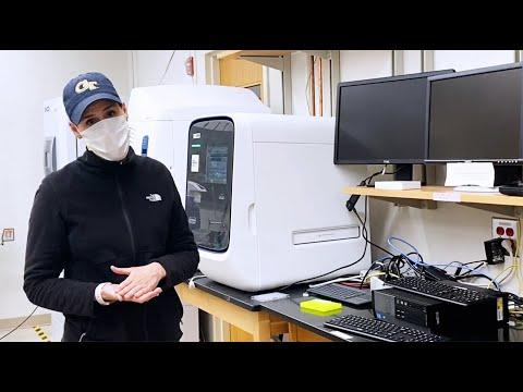 Meet the Georgia Tech Marine Biologist Producing COVID-19 Test Kit Ingredients