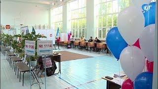 В Новгородской области проходят довыборы депутатов Государственной и областной думы