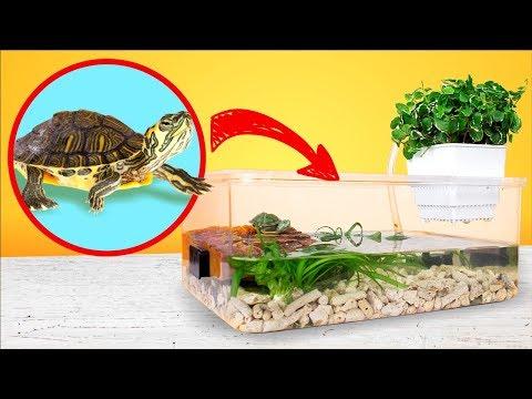 Einfaches und günstiges DIY Terrarium für Rotwangen-Schmuckschildkröten