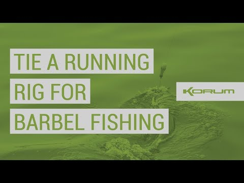 The Rig Guide: How to tie a Running Rig for Barbel Fishing!