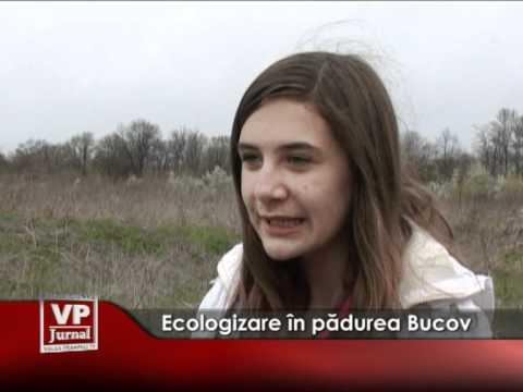 Ecologizare în pădurea Bucov