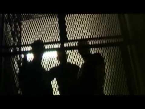 Dobytčí Mor - Dobytci Mor - Blood Murders, official video