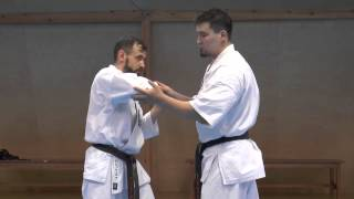 Darmen Sadvokasov  - the principle of fighting in karate kyokushinkai