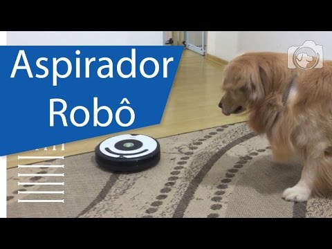Aspirador robô ajuda a limpar os pelos? Irobot Roomba 621