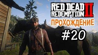 Прохождение Red Dead Redemption 2 #20