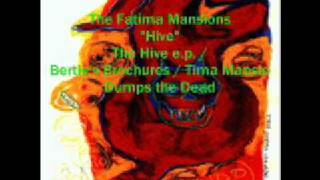 The Fatima Mansions - Hive