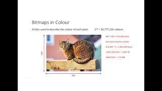 Bitmap Images