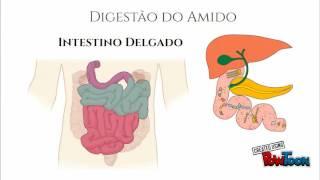 Seminário Sistema Digestório - Acarbose