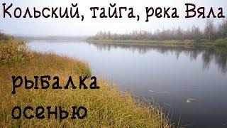 Река климовка рыбалка кольский