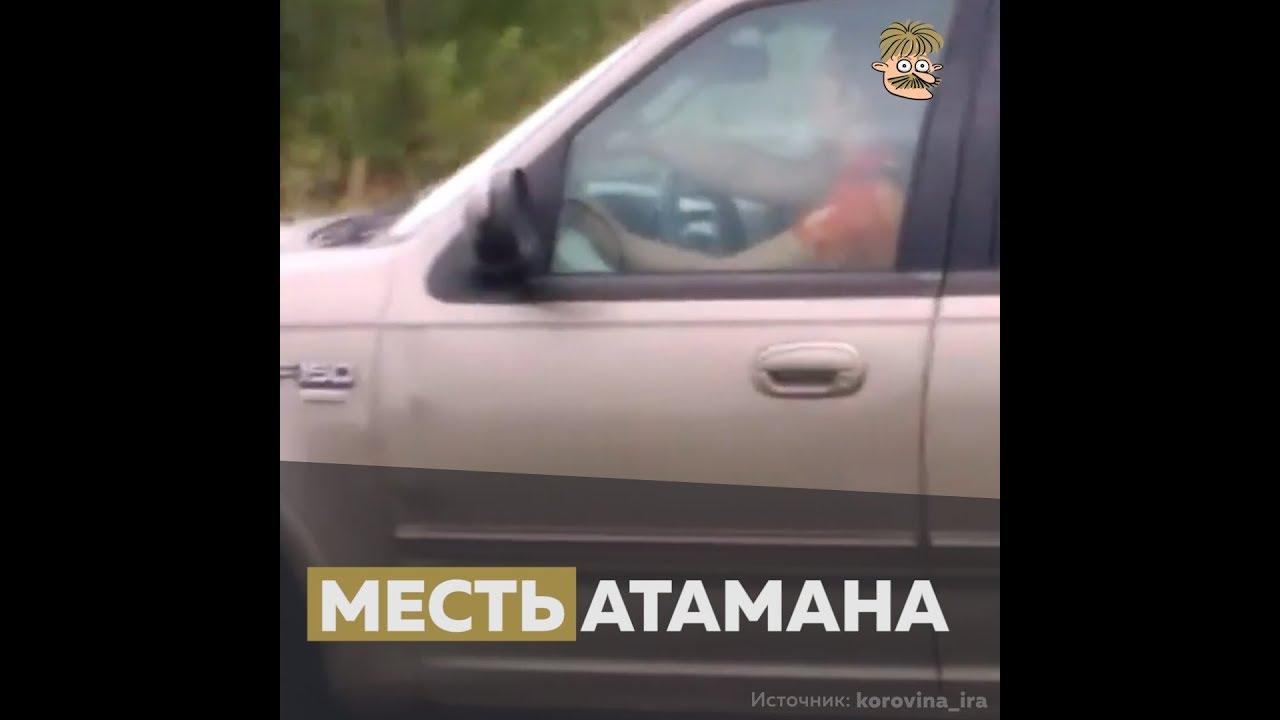 Атаман Амурского казачества своим авто уничтожил клубничную плантацию