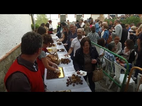 Pujerra celebró con éxito su fiesta de la castaña 2019