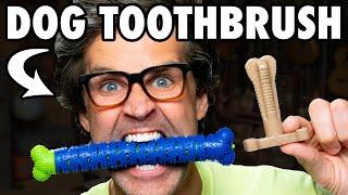 Testing Dog Tooth Brushes