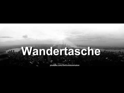 How to pronounce Wandertasche in German