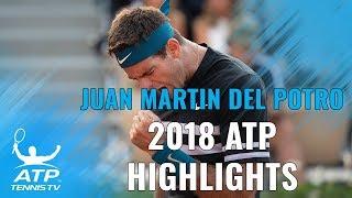 JUAN MARTIN DEL POTRO: 2018 ATP Highlight Reel