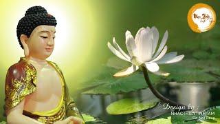 Nhạc Thiền Tĩnh Tâm - Nghe mối tối xua tan hết muộn phiền, giảm căng thẳng ngủ ngon hơn