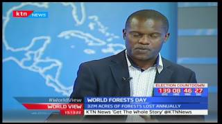 World View: World marks Forest Day - 21/3/2017